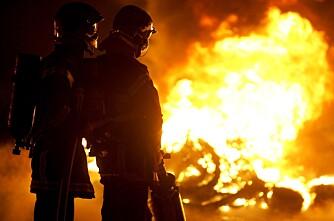 Ny brann i natt  40 griser døde