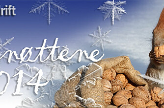 BG-nøttene 2013 – svar, vinnere og kommentarer!