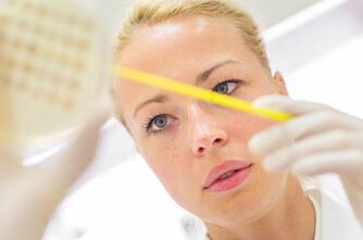 MRSA: 4 kontaktbesetninger smittet
