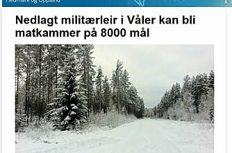 Dyrker 8000 dekar i Solør
