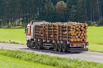 Inntektene fra skogbruket på stigende kurs