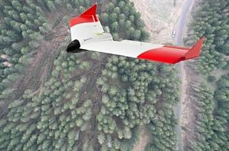 Droner viser vei til vindfall