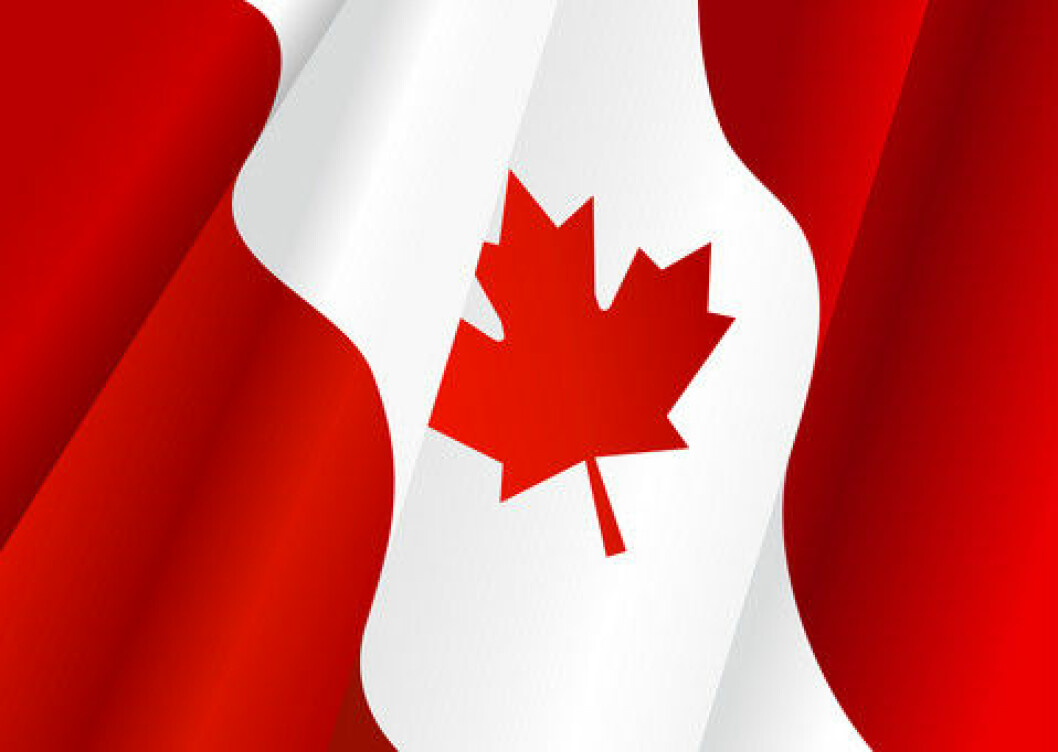 Kanadisk flagg