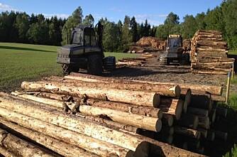 Høyere tømmerpriser
