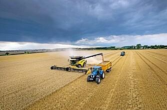 798 tonn hvete på åtte timer!