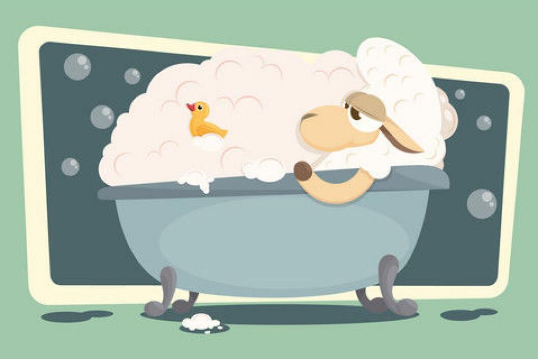 lam i badekar