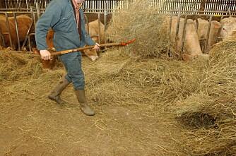 Britisk landbruk trenger 6000 nye medarbeidere årlig