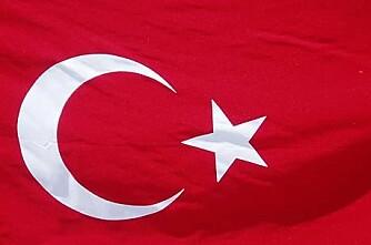 Var de første norske bøndene tyrkere?
