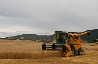 2009  et godt år for trønderbonden
