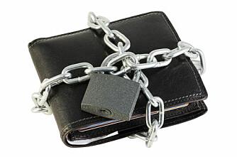 Forbrukeren lukker lommeboka for økologisk mat