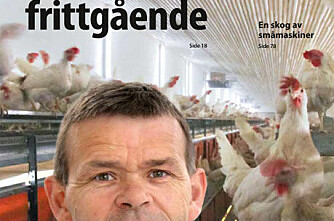 BG 5/11: Frittgående høns