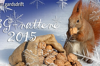 BG-nøttene 2015 – svar, vinnere og kommentarer!