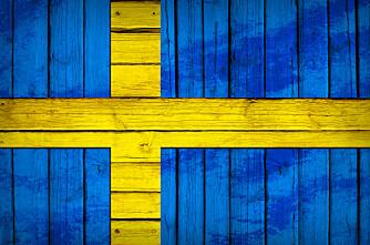1 av 4 tømmerstokker til Sverige