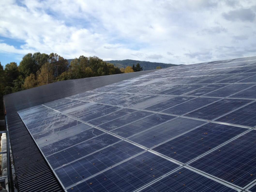 Solcelleanlegget på Minne Gård, Norges første på gard. Installasjonen levert av Solel as og Nordic Solar. Foto: Solel