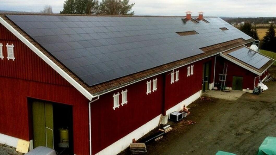Solceller på låvetaket til Grøndalen gård. Foto: Hans Arild Grøndahl