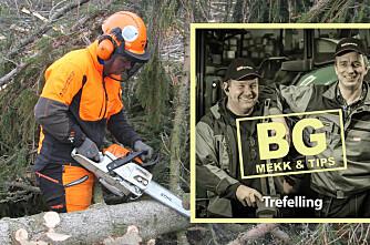BG mekk & tips: Trefelling