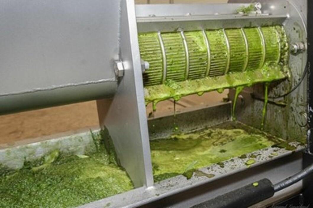 Bildet viser pressa som tyner safta ut av graset. Foto: Åsmund Langeland