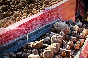 Luftige «steinnyheter» fra Grimme
