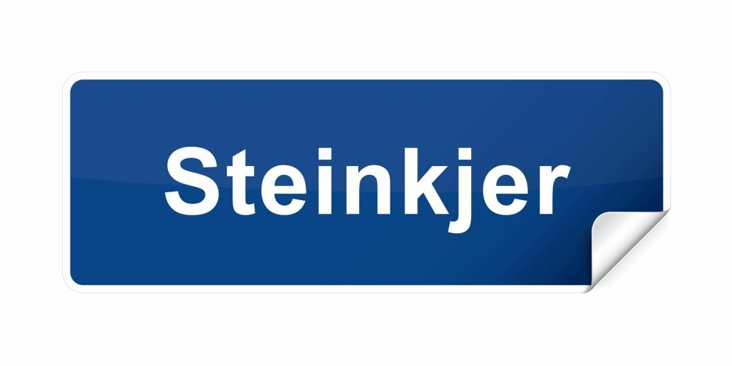 30 årsverk i Landbruksdirektoratet skal innen tre år lokaliseres i Steinkjer. Foto: colourbox.com
