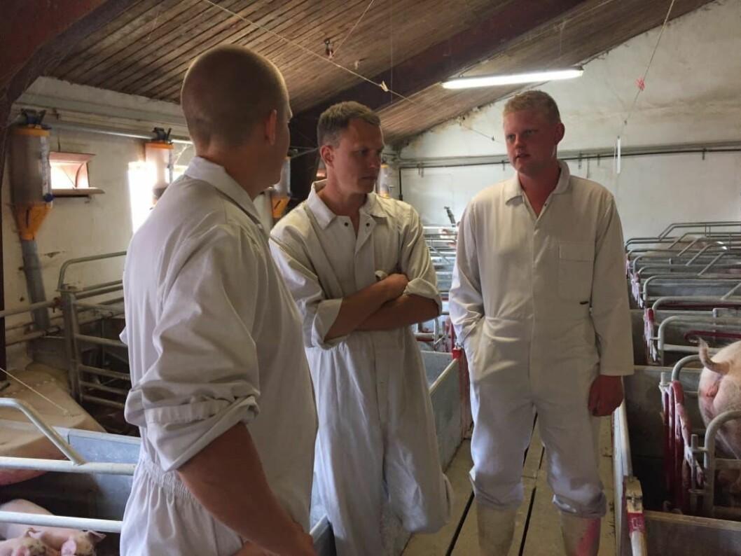 Mathias Sørensen og Jesper Jakobsen hentet inn råd da de skulle etablere svineproduksjonen. Pressefoto.