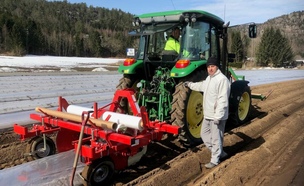 Jan Magne Nærebø i traktor og Grzegrz Poplawski i gang med setting av tidligpoteter i Reddal. Foto: Tom Sigurd Dokkedal