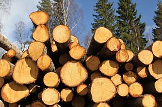Norske Skog solgt til investeringsselskap