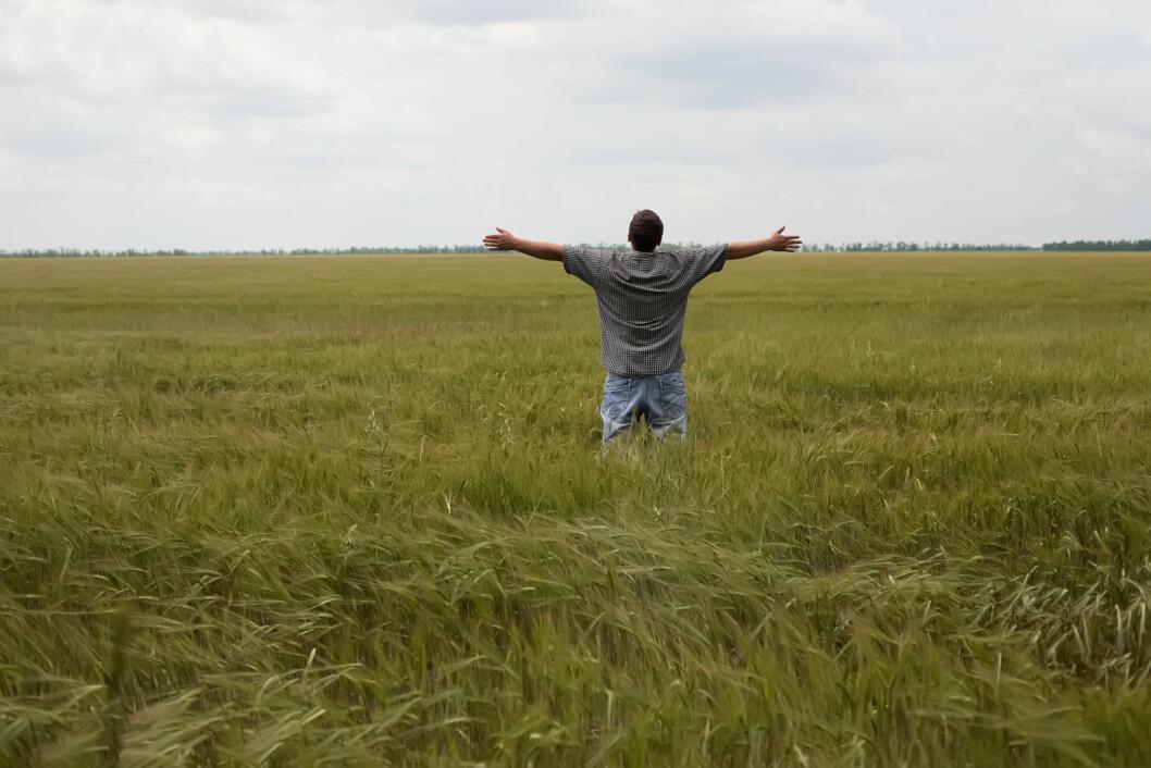 Mange unge bønder kjenner på ensomheten som bruker og opplever tida før og etter overtakelsen som stressende. Foto: colourbox.com