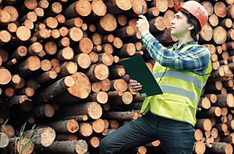 Rekordhøye tømmerpriser
