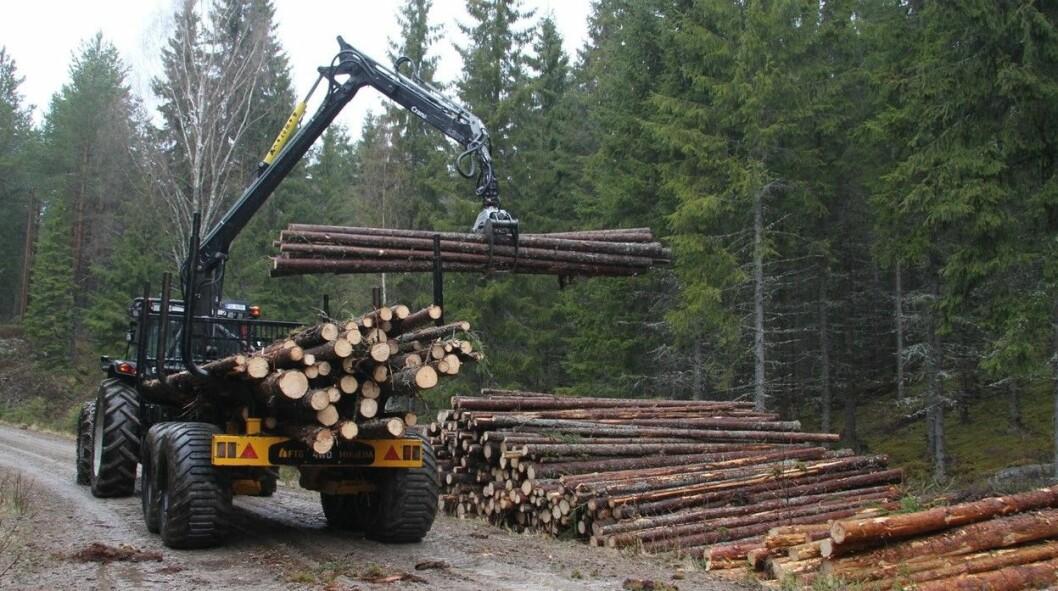 Rekordavvirkning til tross: tilveksten er større enn tømmeravvirkningen.
