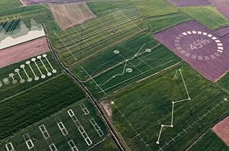 Samarbeider om landbruksplattform