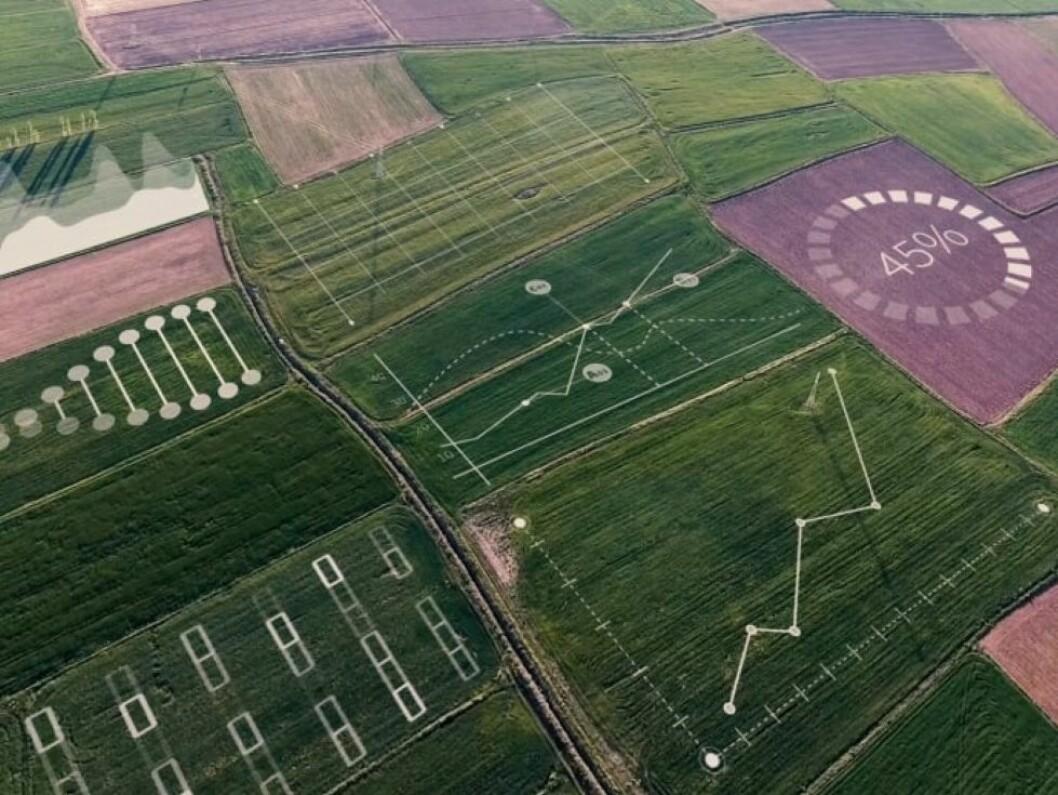 Yara og IBM kombinerer agronomikunnskap og ny teknologi for å utvikle en global digital landbruksplattform (foto: Yara)