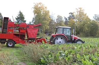 Småsmarte bønder