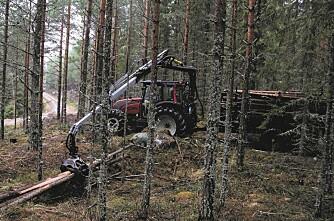 Traktor som hogstmaskin og lassbærer