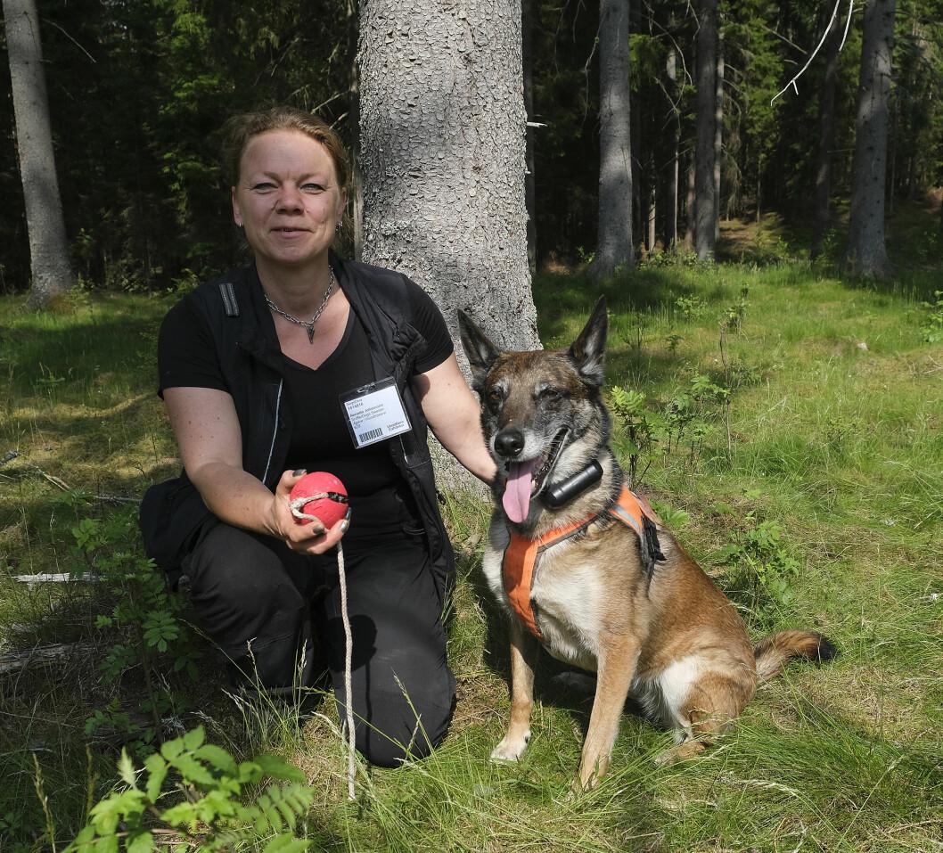 En hund er mer effektiv i jakten på barkbillene enn hva menneskene er, påstår Anette Johansson. Foto:SkogsElmia
