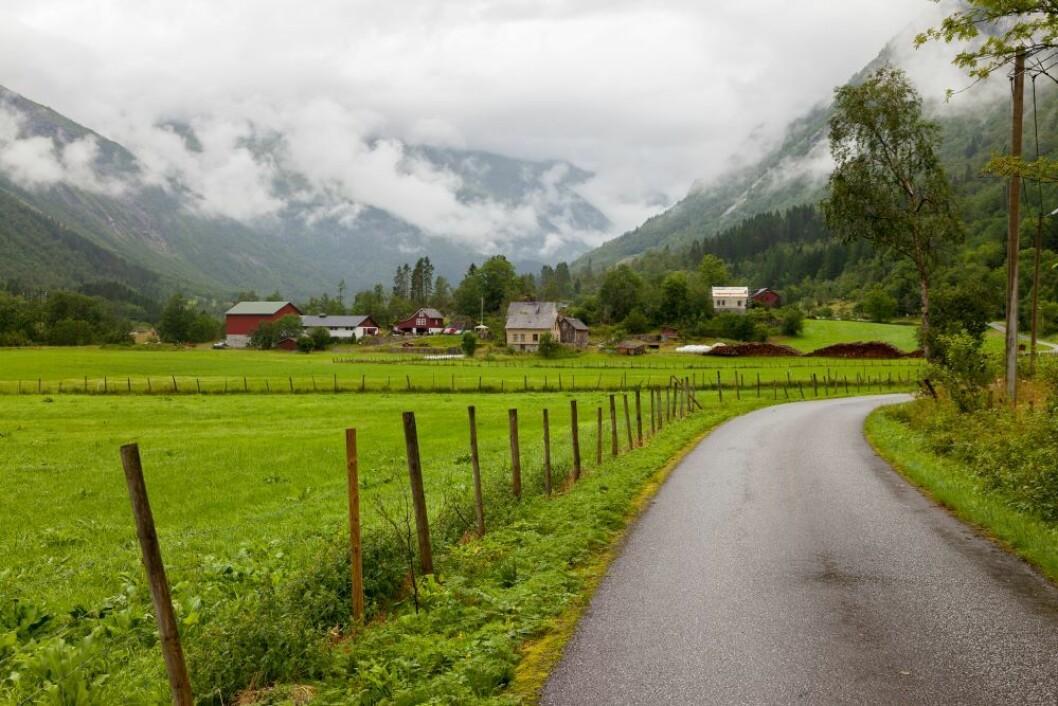 I 2018 krøp antall jordbruksbedrifter i Norge under 40 0000. Gjennomsnittsbruket har et areal på 248 dekar. Foto: colourbox.com