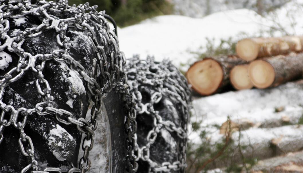 Skognæringa blir påvirket av korona.
