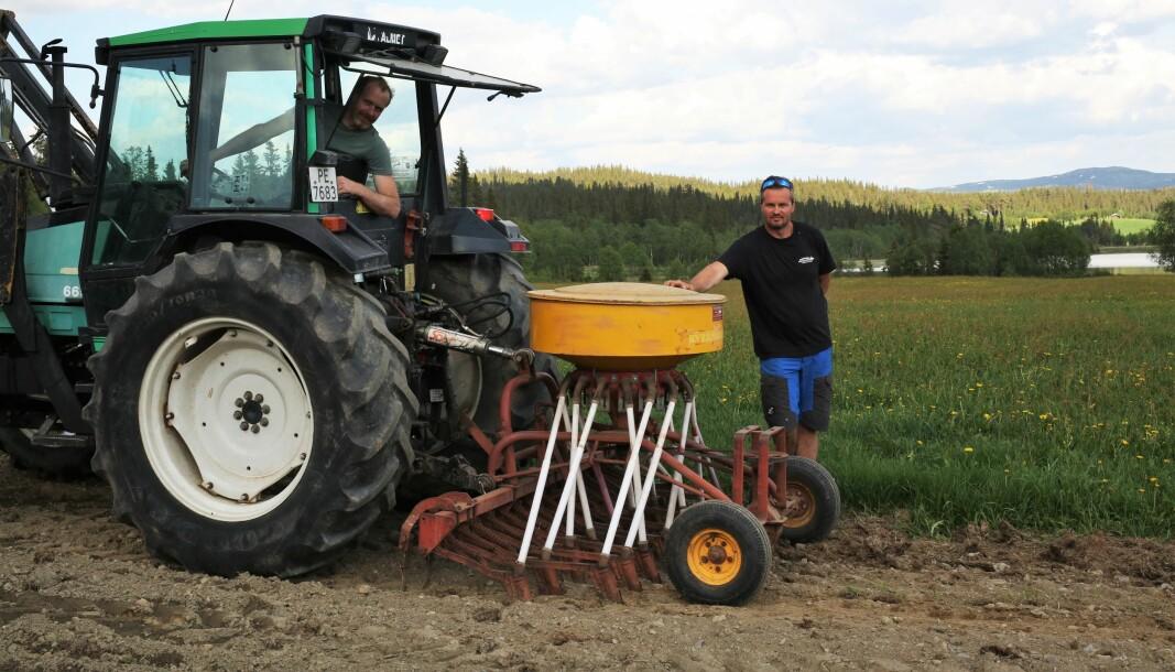 Den gamle Stokland-såmaskinen gjør jobben. Arve Voldhaug i traktoren, Geir Goflebakken bak.