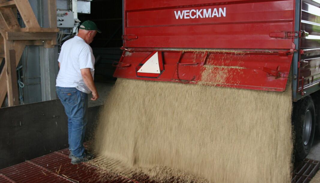 Det er stor sannsynlighet for at bønder daglig eksponeres for enten støv, gasser eller eksos.