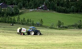 Landbruket dukker under 50 000 årsverk