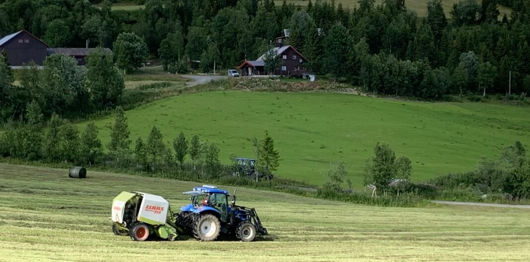 38 500 årsverk er blitt borte i landbruket de siste 20 årene. Foto: Bo Hansen