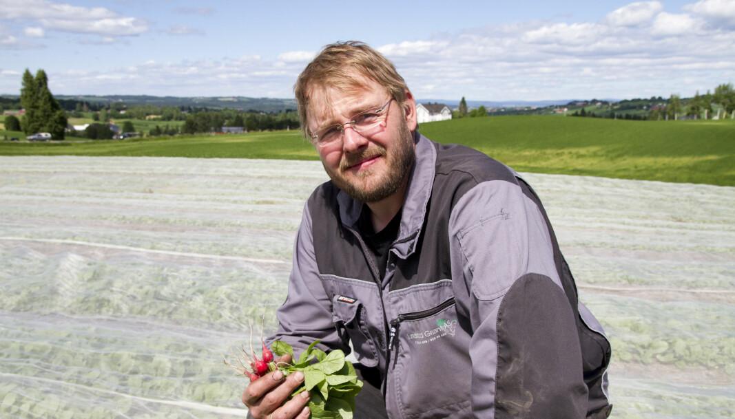 Grønnsaksprodusent Einar Dyste ved Lundstad grønt AS på Toten. Foto: Lars Ovlien