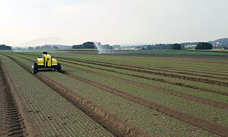 Grønnsaksbønder har kjøpt ugrasroboter