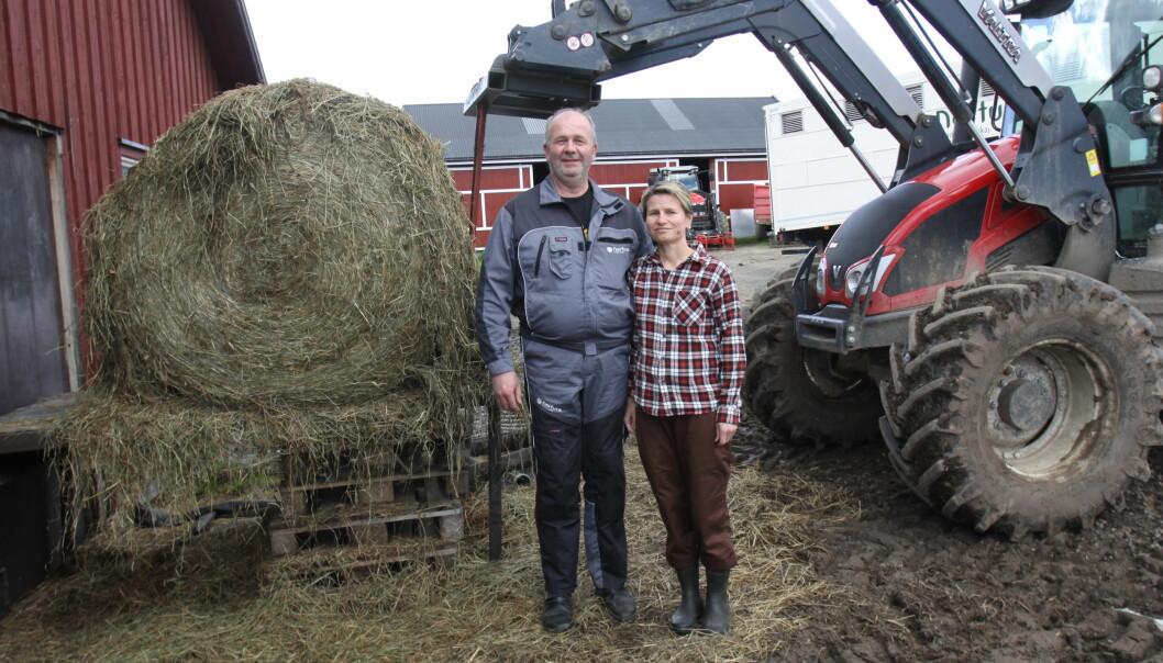 Ole Stenerud og Aino Marja Negaard driver garden Søndre Ballangrud på Hadeland.