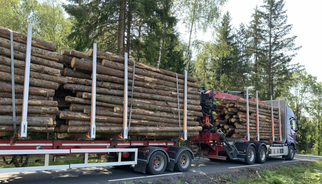 Prisøkningen frister flere til å hente ut mer sagtømmer fra skogen. Foto: Bo Hansen