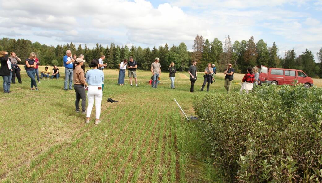 Prosjektleder Anne Kjersti Uhlen (lengst til høyre på bildet).